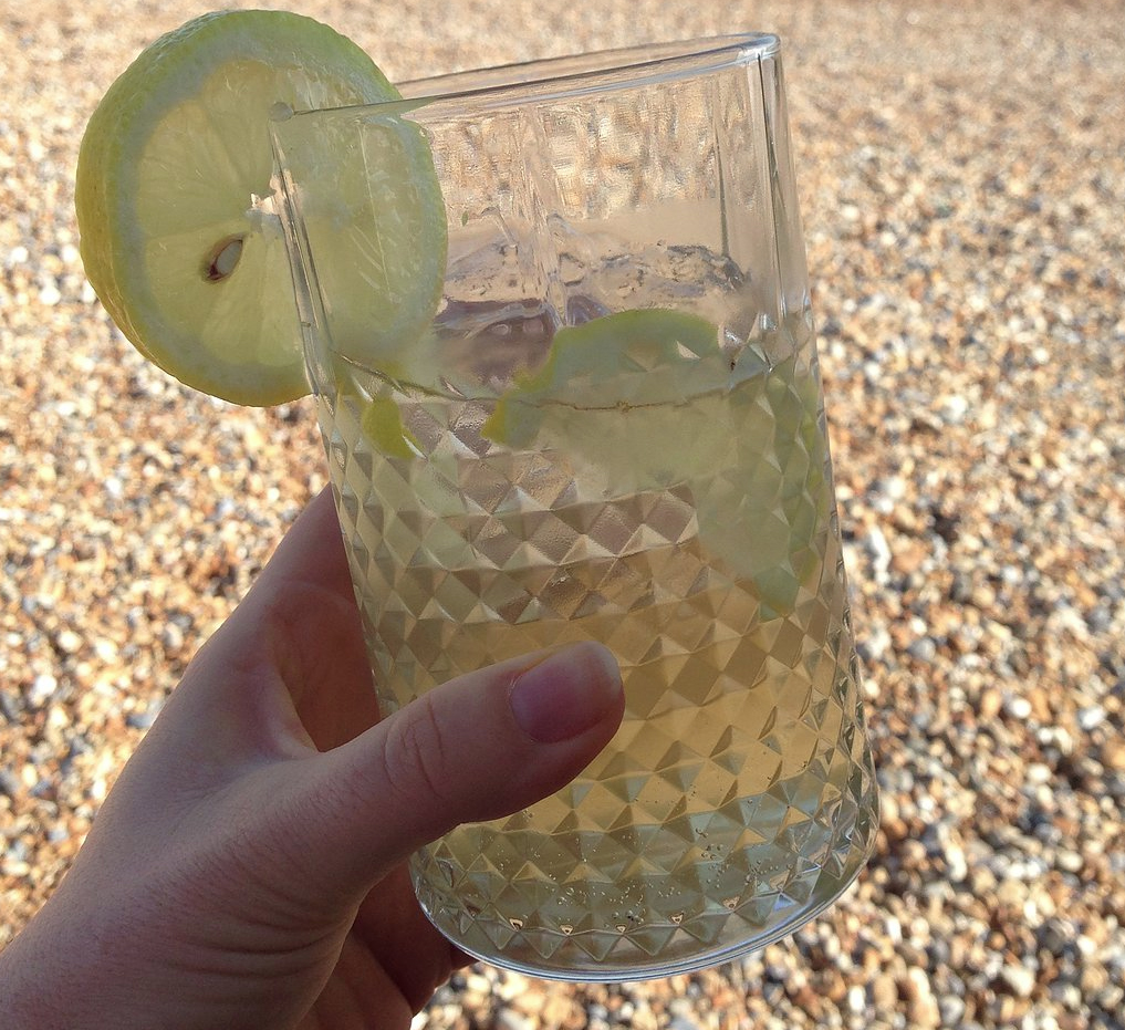 martini and tonic cocktail by jamie's magazine