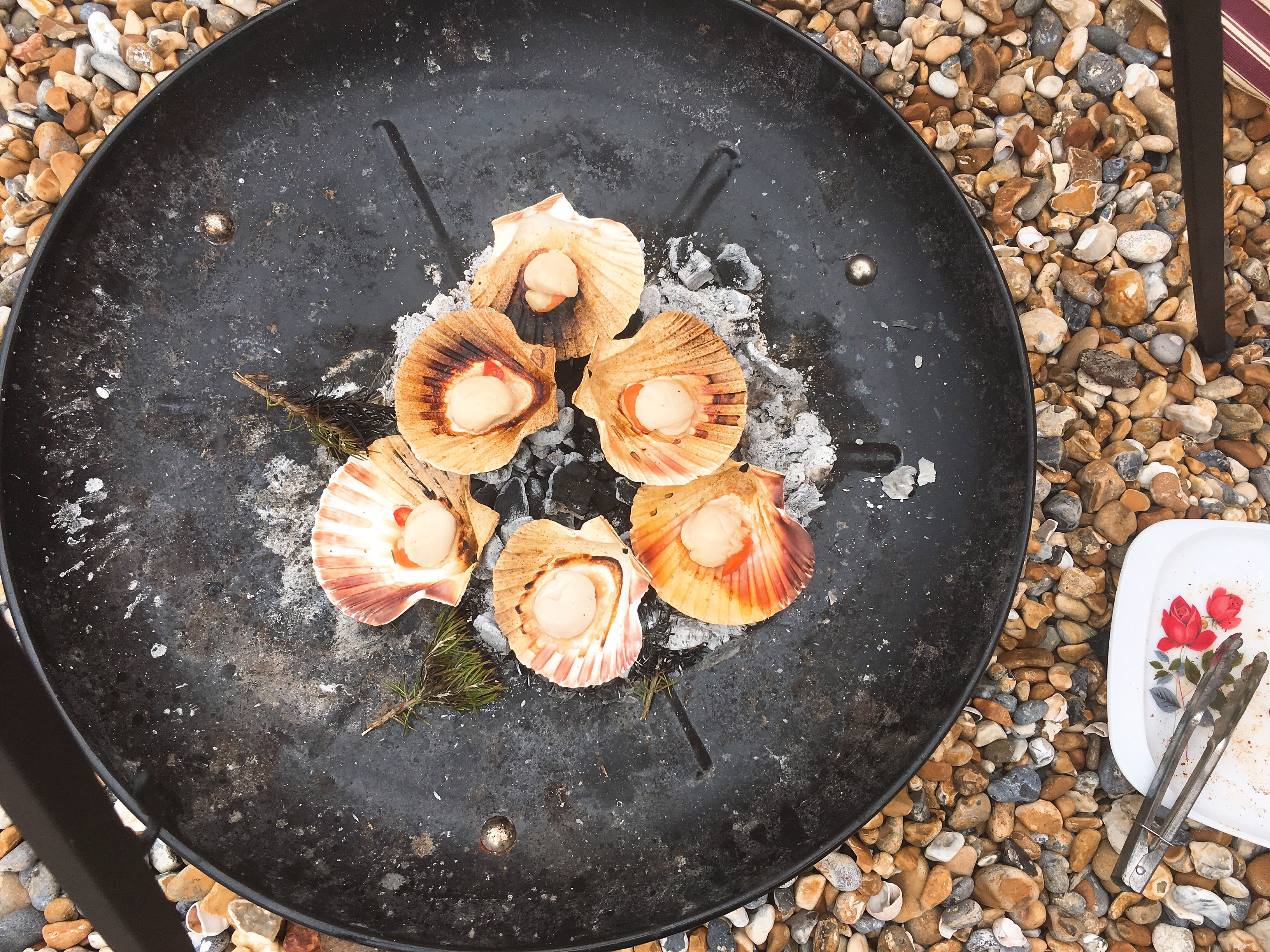 Beach Cooking: Scallops cooked on the fire by Beachhutcook