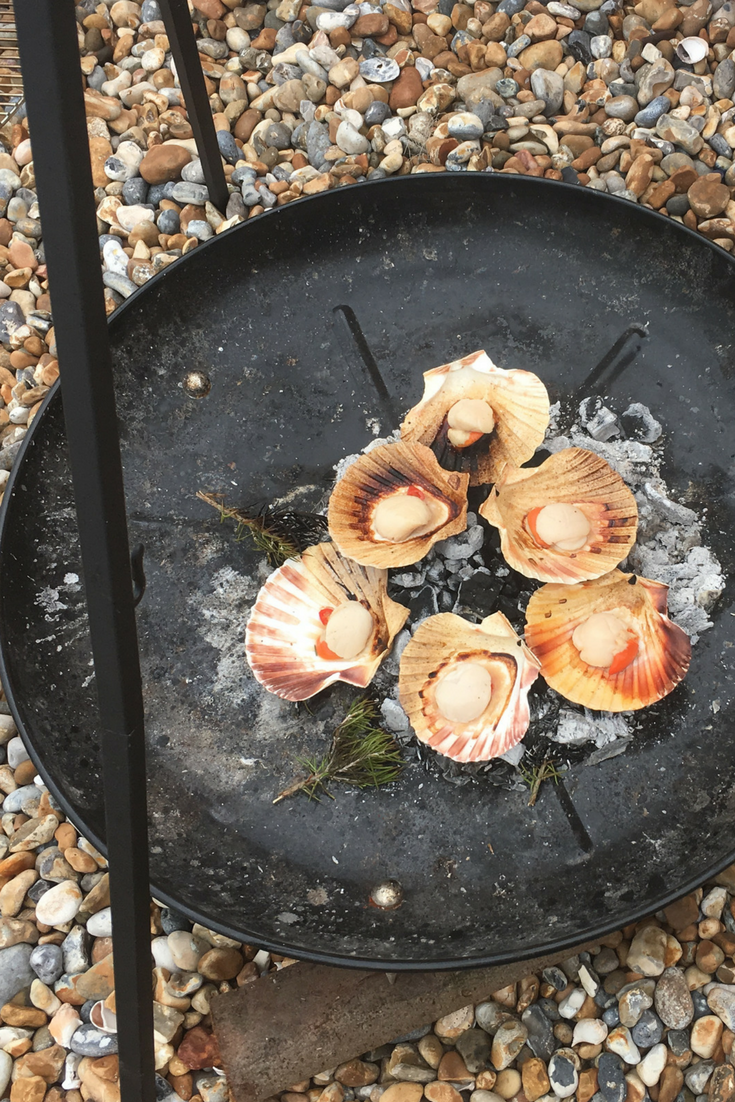 scallops cooked on the fire on the beach.